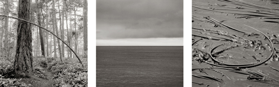 Peter de Lory, Polaris Sky and Shark Reef, 2002. Lopez Island, WA triptych, Archival Ultrachrome Inkjet Print