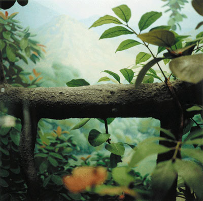Nealy Blau, Volcano , Field Museum , Chicago , 2005 Chromogenic Print Courtesy of G.Gibson Gallery