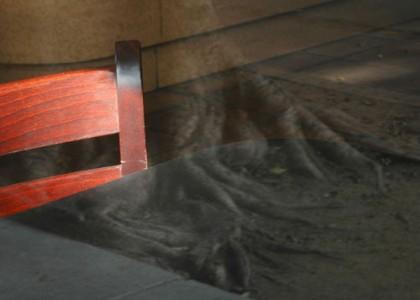 Boundaries Scotia Mackay, Untitled, 2006 , Ink Jet Print