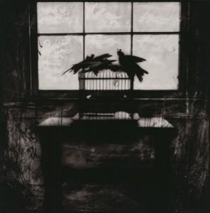 Carol Golemboski, Bird Cage, Silver Gelatin Print