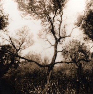 Shannon Welles Uros Boat 2005, Lith print, beeswax
