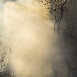 Jane Fulton Alt, Burn No.93