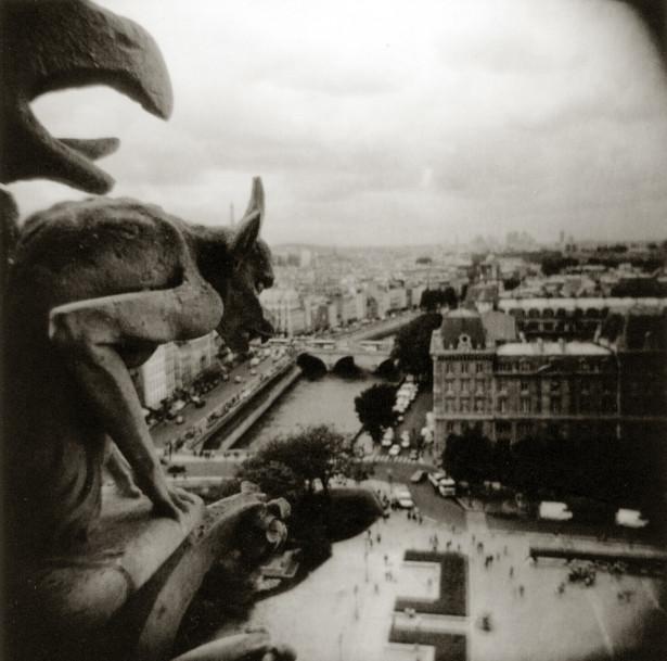 Gargoyle, Notre Dame, Paris, 2003