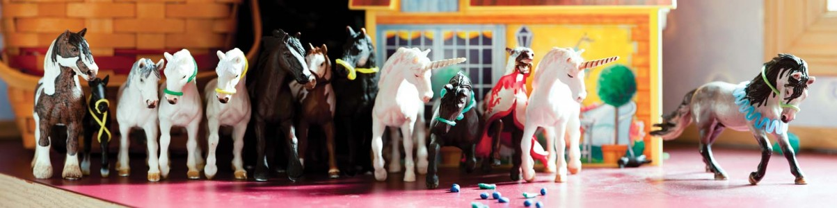 AnnaReam2_B_Horse_Line_2011