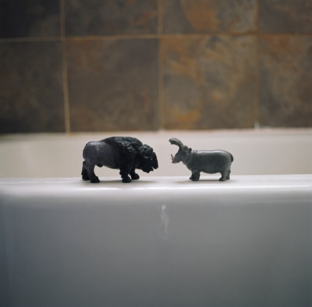 Annie Van Avery, Toys In The Tub, 2012