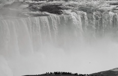 Barry Greff, Niagara
