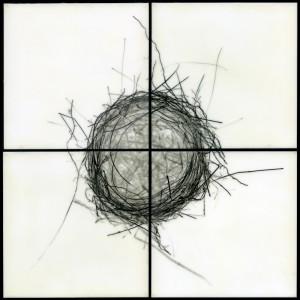 Christa Bowden, Nest II