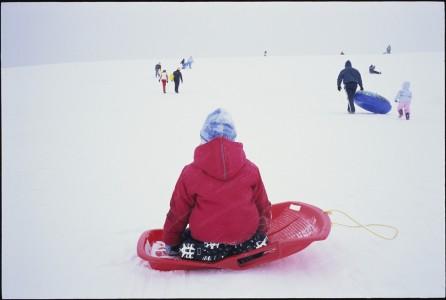 David Burnham, Snowjob