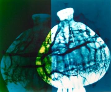Janel Swangstu, Vessel#1