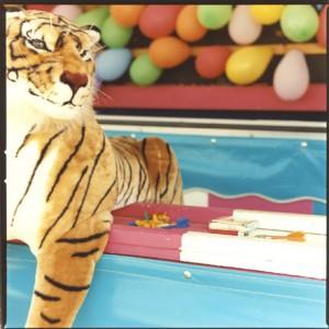 Jennifer L.F. McNichols, Still Life With Tiger