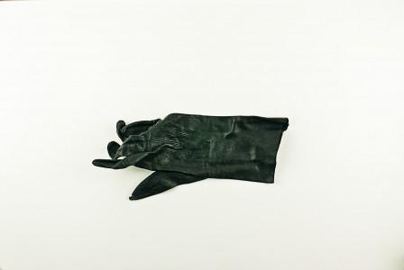 Kathryn Abarbanel, Rauthaus Glove