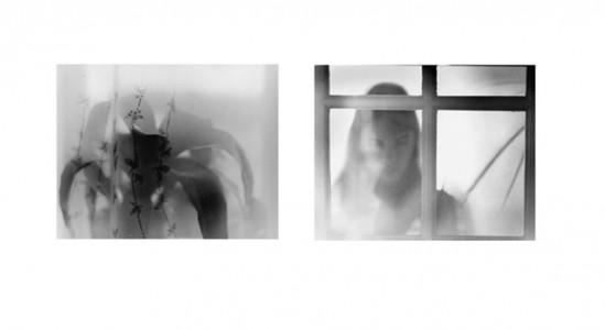 Jolanta Kotlarczyk, My Windows