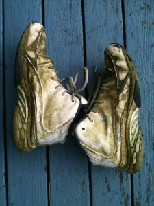 Makoto Sugimoto, Shoes 738AM