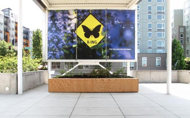 Pollinator_Pathway_03
