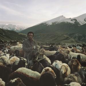 Benjamin Rasmussen, A Wahki Shepherd, 2010