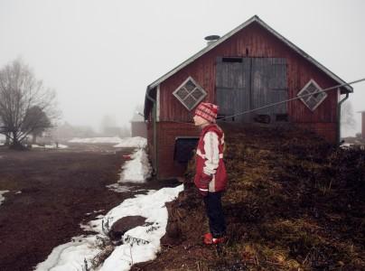 Satu Haavisto, Untitled (cow shed)