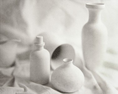 Terry Towery, Untitled #3 from Useless Beauty Series