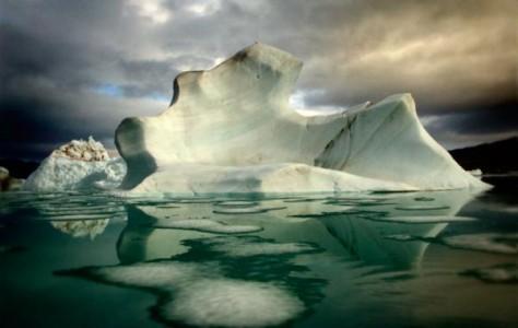 Brian Knappenberger , Iceberg with bird - Otto Fiord, Nunavut
