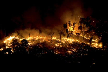 Amazon rainforest burns, Brazil, 2008 Inkjet Print © Daniel Beltra