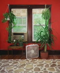 Untitled Interior (stone rug), 2007 Digital C-Print © Sarah Malakoff