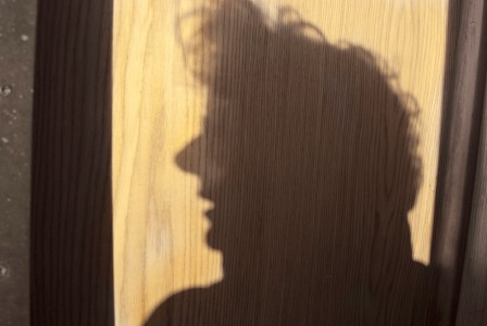 Janet Neuhauser, Shadow on the Elysian, 2008