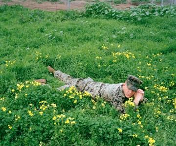 Jason Hanasik, Steven In A Bed of Flowers